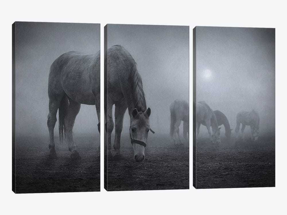 Moonlit by Samuel Malach 3-piece Canvas Print