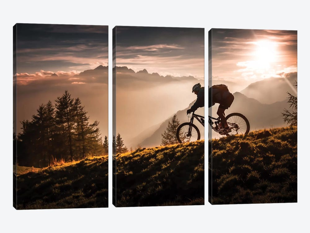 Golden Hour Biking by Sandi Bertoncelj 3-piece Canvas Art