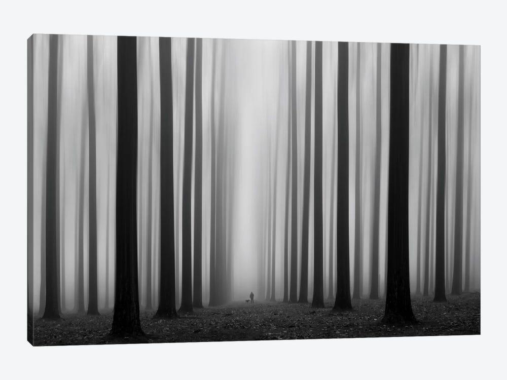 Labyrinth by Jochen Bongaerts 1-piece Canvas Art Print