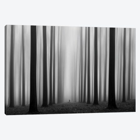 Labyrinth Canvas Print #OXM205} by Jochen Bongaerts Art Print