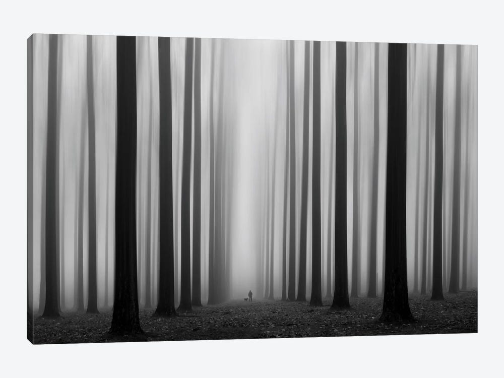 Labyrinth by Jochen Bongaerts 1-piece Canvas Art Print