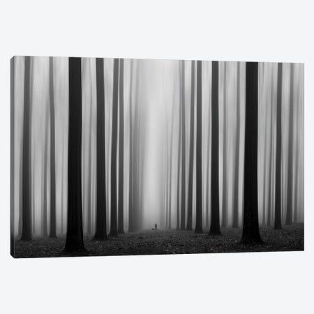 Labyrinth Canvas Print #OXM205} by Jochen Bongaerts Art Print