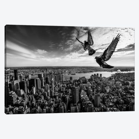 Pigeons On The Empire State Building Canvas Print #OXM2076} by SergioSousa Canvas Wall Art