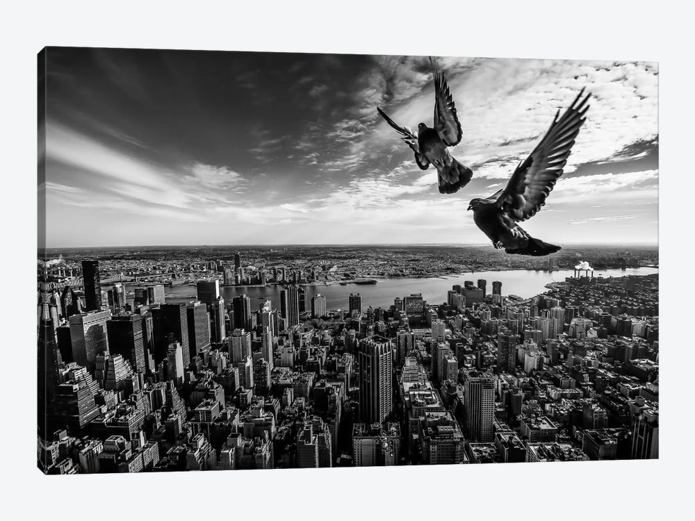 Pigeons On The Empire State Building by SergioSousa 1-piece Canvas Artwork