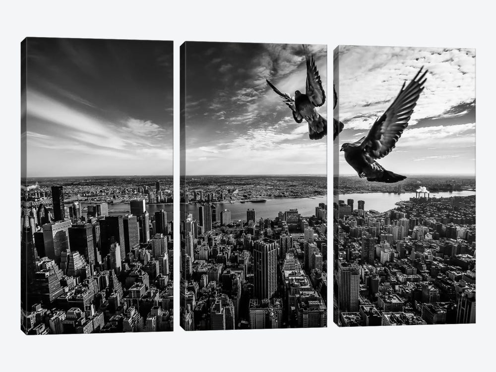 Pigeons On The Empire State Building by SergioSousa 3-piece Canvas Art