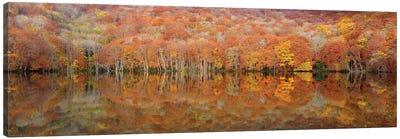 Glowing Autumn Canvas Art Print