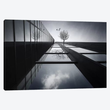 The Ethereal Flying Garden Canvas Print #OXM208} by Dr. Akira Takaue Canvas Artwork