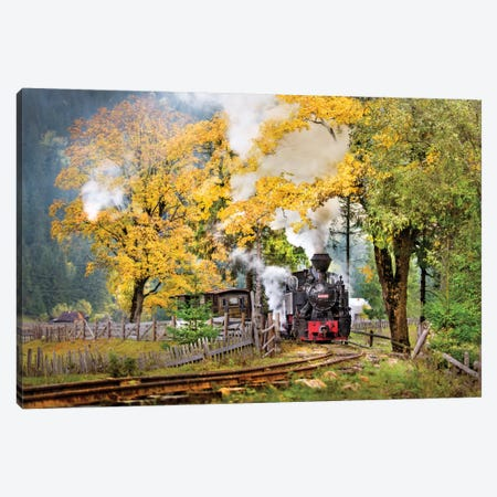 A Sort Of Fairy Tale Canvas Print #OXM2093} by Sorin Onisor Canvas Print