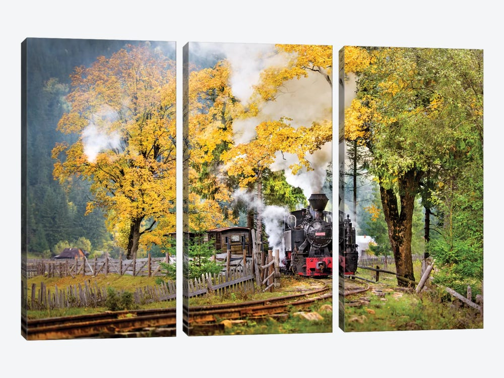 A Sort Of Fairy Tale by Sorin Onisor 3-piece Canvas Print