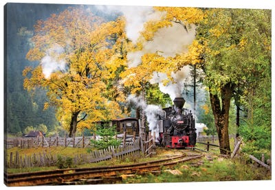 A Sort Of Fairy Tale Canvas Art Print