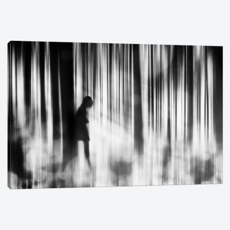 Caught In The Sorrow Canvas Print #OXM2096} by Stefan Eisele Canvas Artwork
