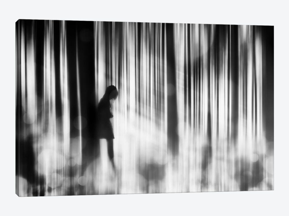 Caught In The Sorrow by Stefan Eisele 1-piece Canvas Wall Art