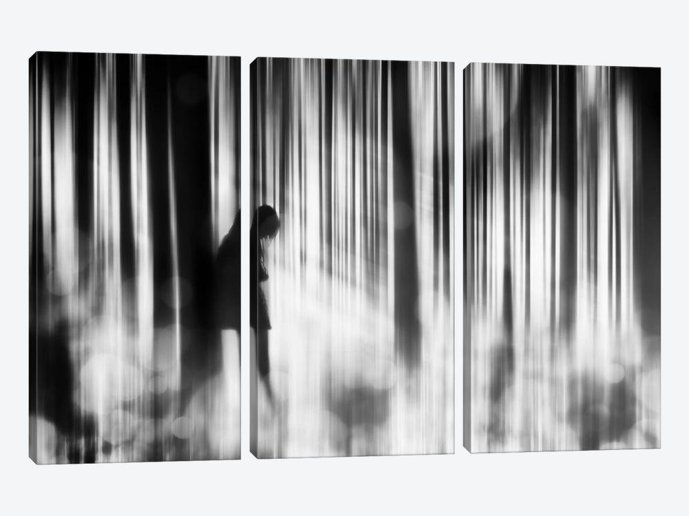 Caught In The Sorrow by Stefan Eisele 3-piece Canvas Art