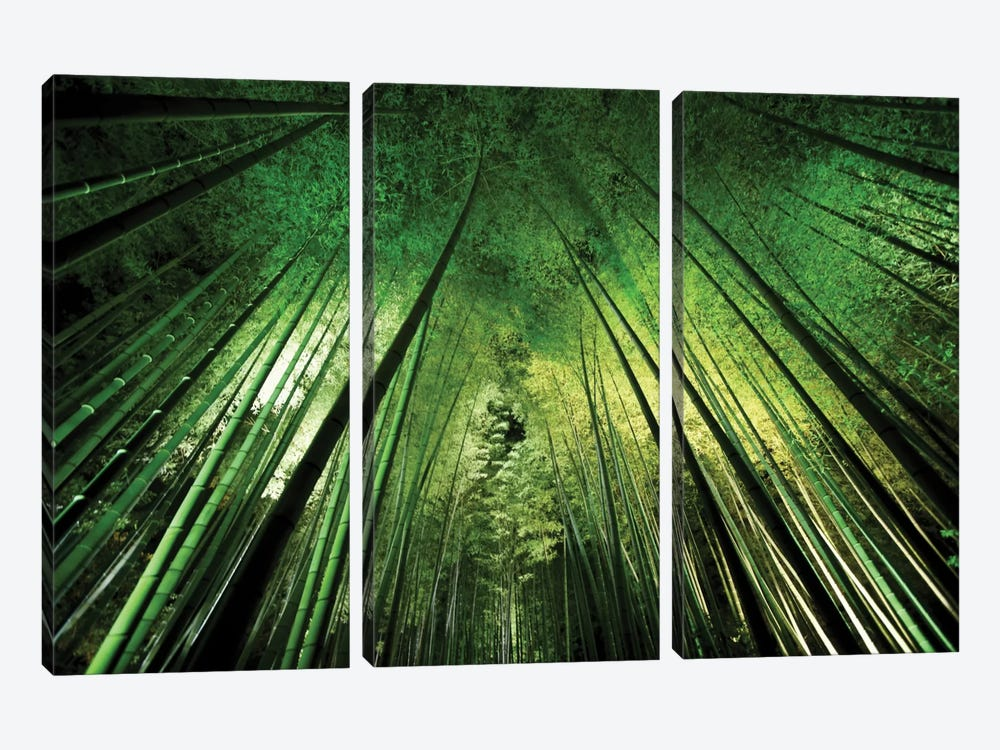 Bamboo Night by Takeshi Marumoto 3-piece Canvas Artwork