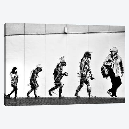 Evolution Canvas Print #OXM2129} by Tatsuo Suzuki Art Print