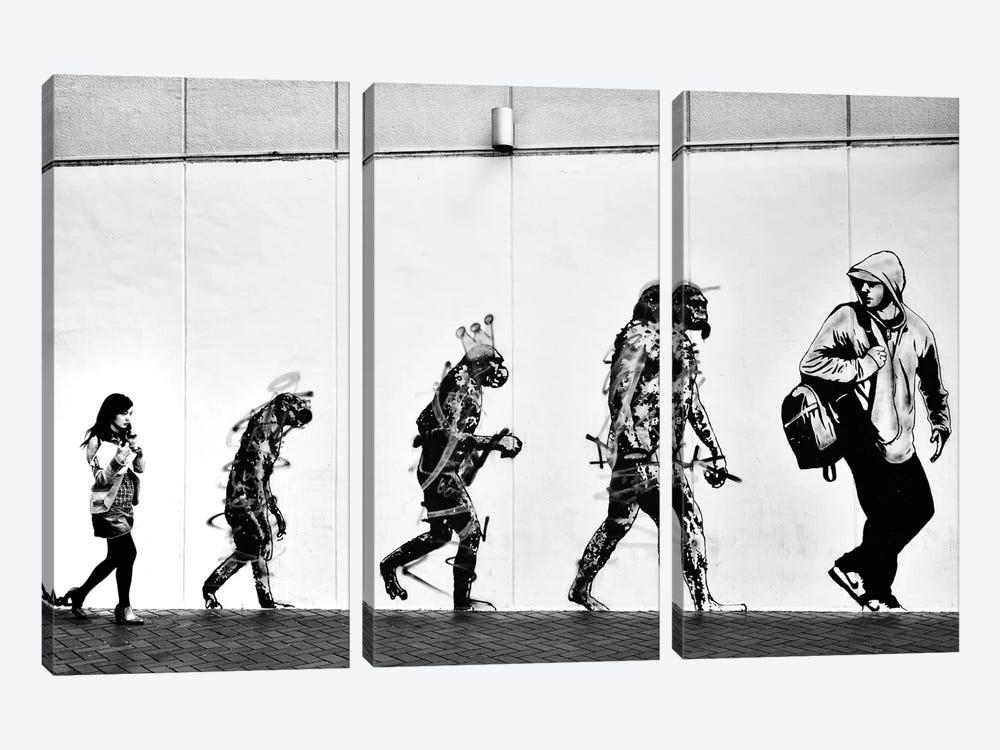 Evolution by Tatsuo Suzuki 3-piece Art Print