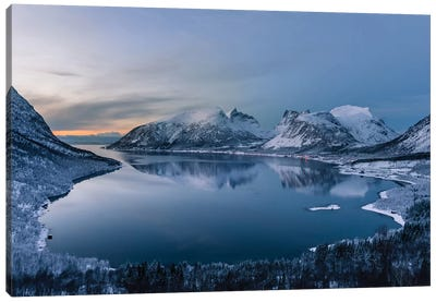 Polar Night Canvas Print #OXM2162