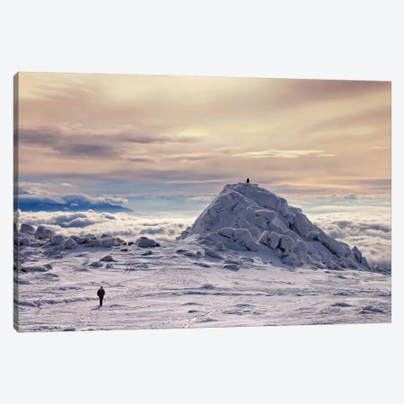 Follow The Leader Canvas Print #OXM2179} by Veselin Malinov Canvas Wall Art