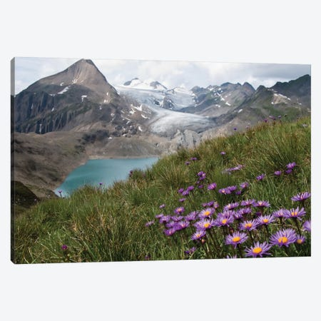 Corno Gries, Switzerland Canvas Print #OXM2195} by Vito Guarino Canvas Print