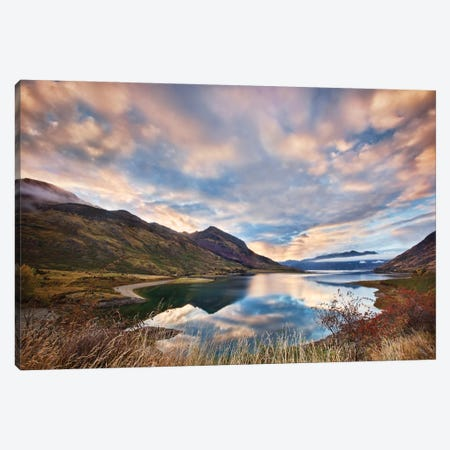 Morning Delight At Lake Hawea Canvas Print #OXM2229} by Yan Zhang Canvas Art