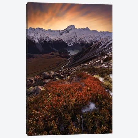 Mount Sefton, Aroarokaehe Range, Southern Alps, New Zealand Canvas Print #OXM2230} by Yan Zhang Art Print