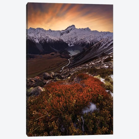 Mount Sefton, Aroarokaehe Range, Southern Alps, New Zealand Canvas Print #OXM2230} by Yan Zhang Art Print