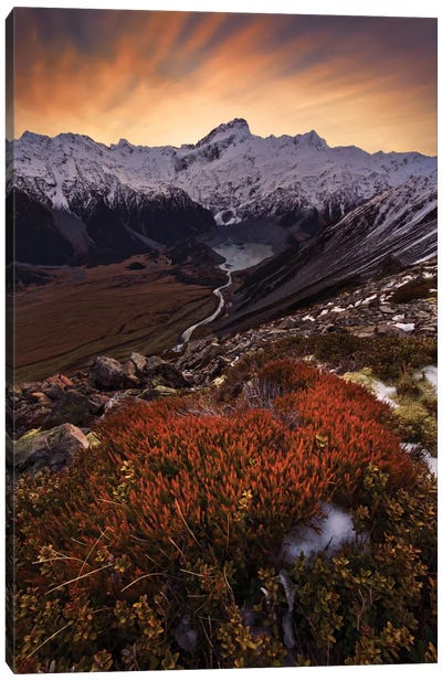Mount Sefton, Aroarokaehe Range, Southern Alps, New Zealand Canvas Art Print