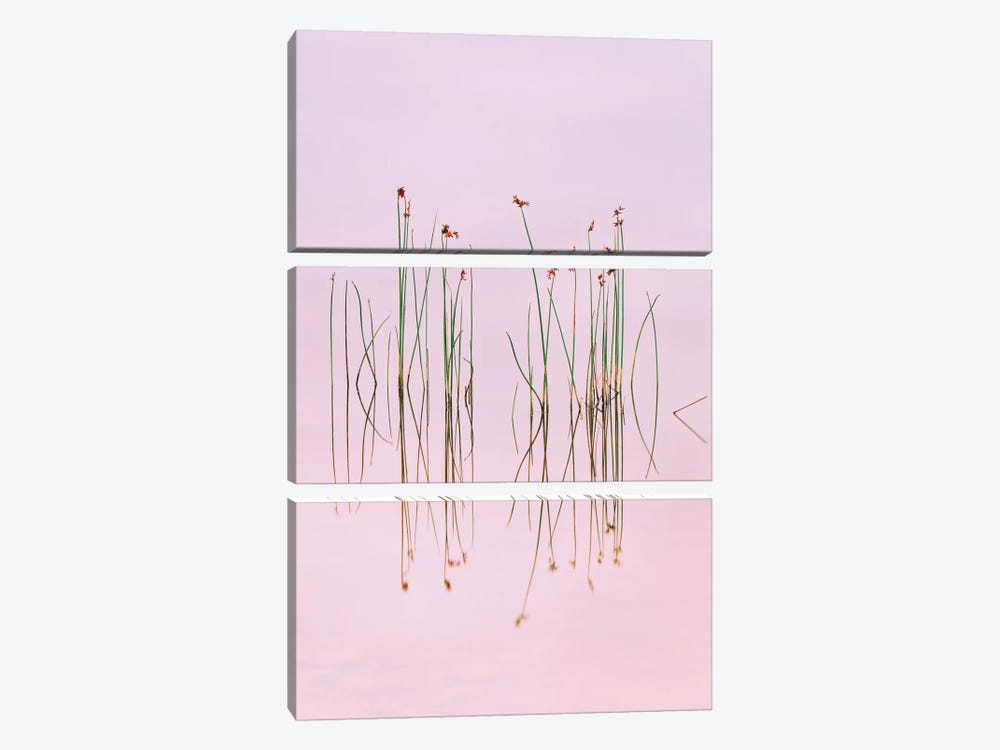 Reflection Of Serenity by Yan Zhang 3-piece Canvas Art