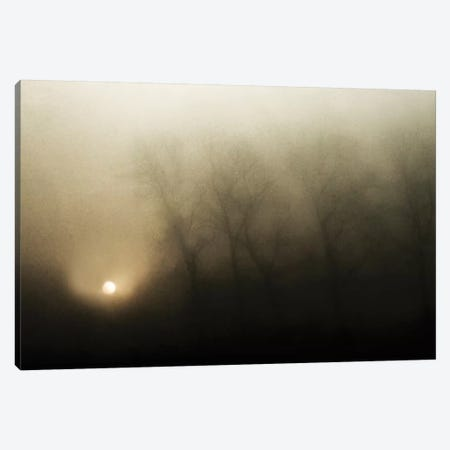 Celestial Melody To The Earth Canvas Print #OXM2249} by Yvette Depaepe Canvas Art