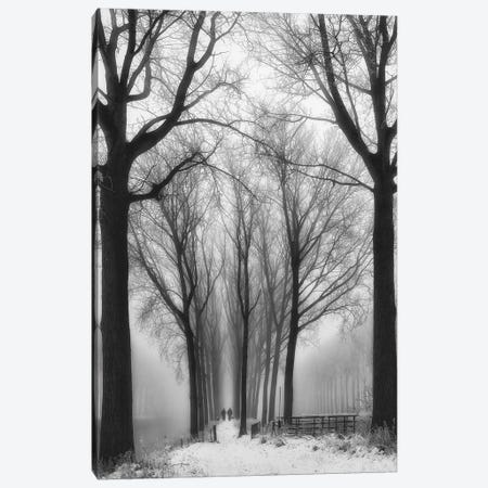 Then Winter Comes Canvas Print #OXM2258} by Yvette Depaepe Canvas Print