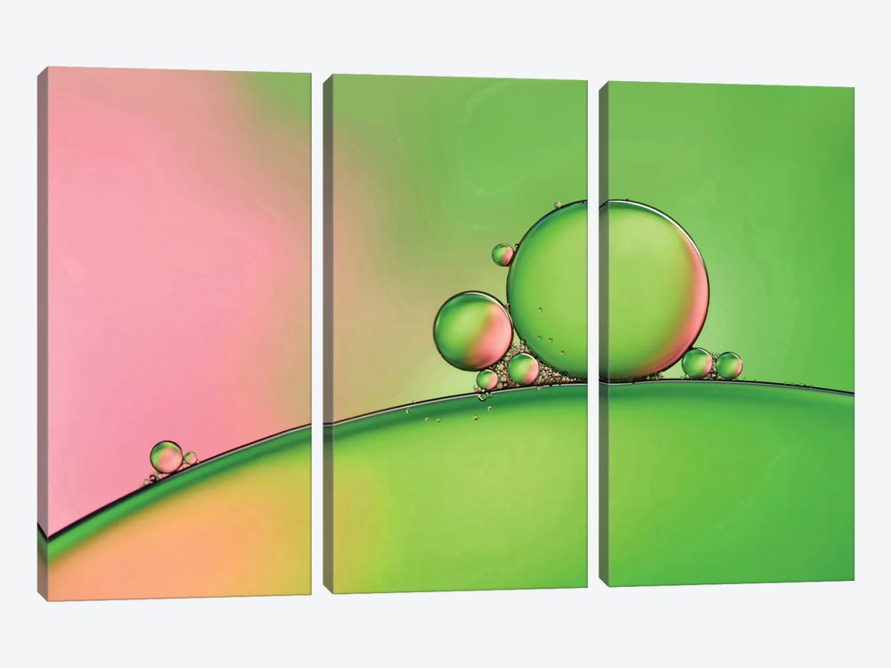 Apple Blush by Heidi Westum 3-piece Canvas Wall Art