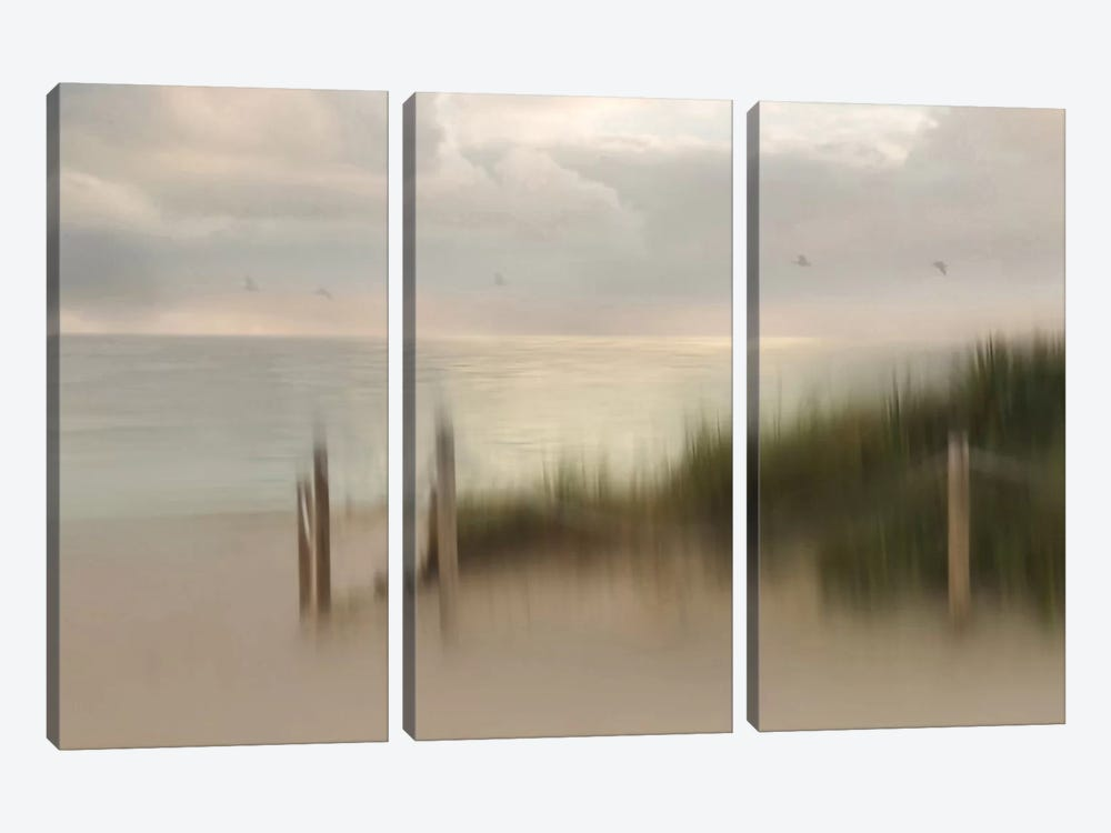 Early Bird by Heidi Westum 3-piece Canvas Wall Art