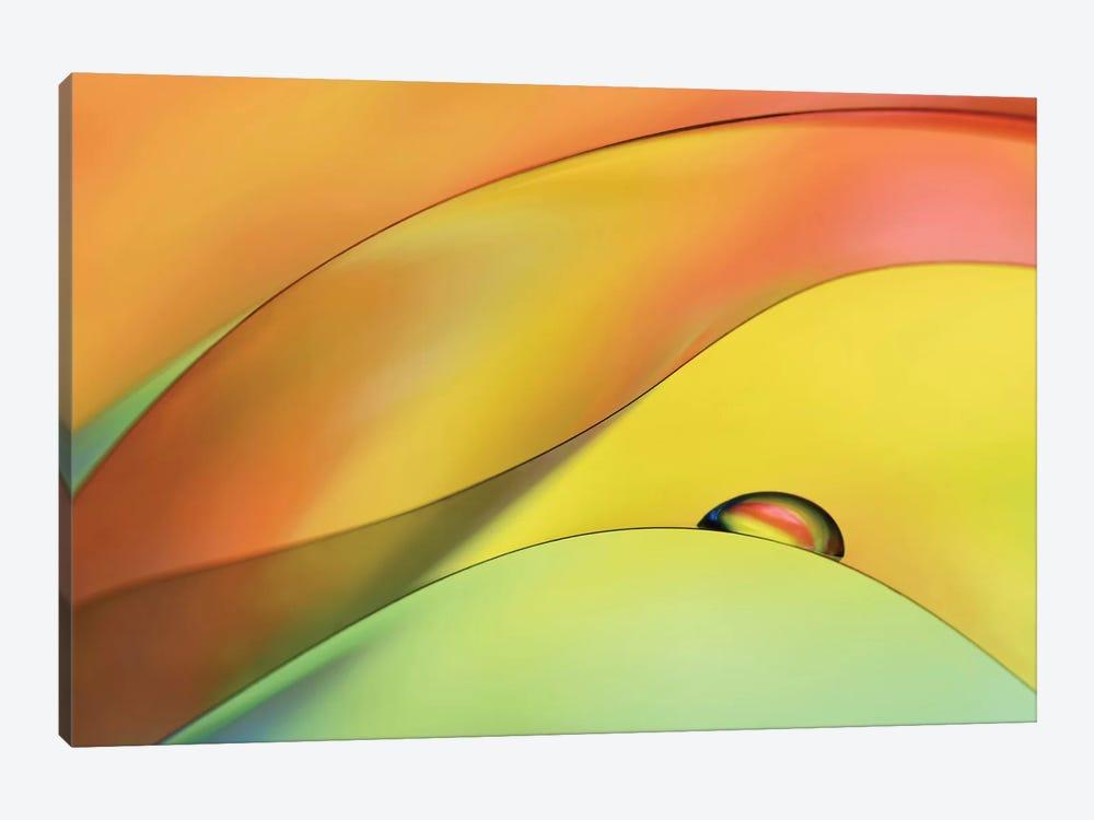 Waiting by Heidi Westum 1-piece Canvas Art