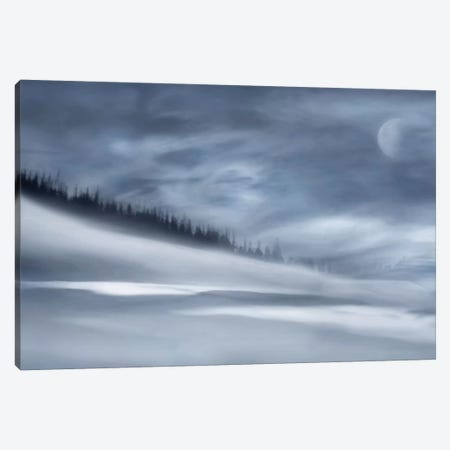 Winter Night Canvas Print #OXM2283} by Heidi Westum Canvas Wall Art