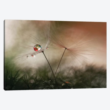 With And Without Canvas Print #OXM2284} by Heidi Westum Art Print
