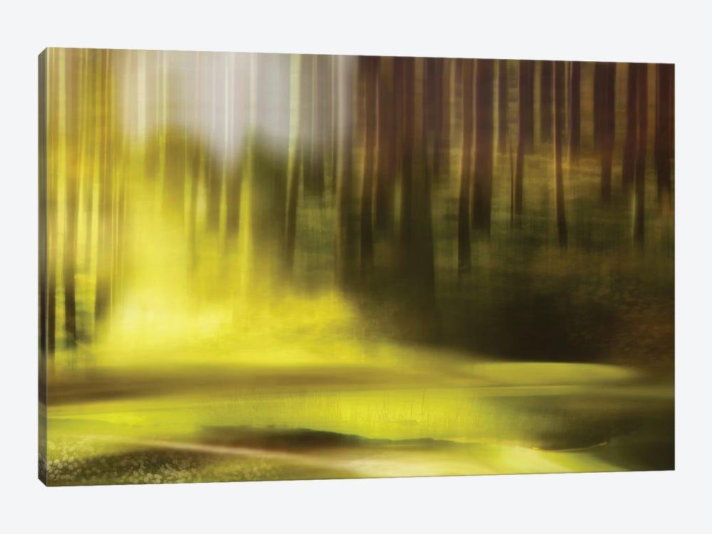 Wonder by Heidi Westum 1-piece Canvas Art Print