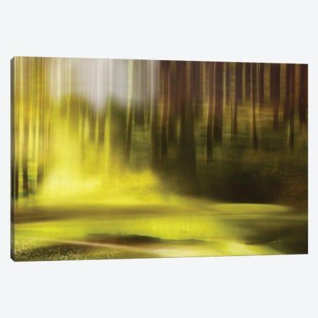 Wonder Canvas Print #OXM2285} by Heidi Westum Canvas Print