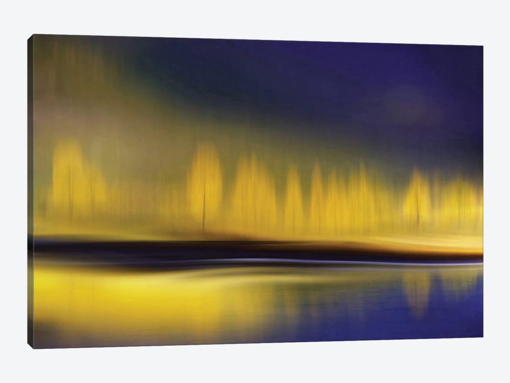 Yellow Night by Heidi Westum 1-piece Canvas Wall Art