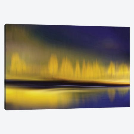 Yellow Night Canvas Print #OXM2286} by Heidi Westum Canvas Print