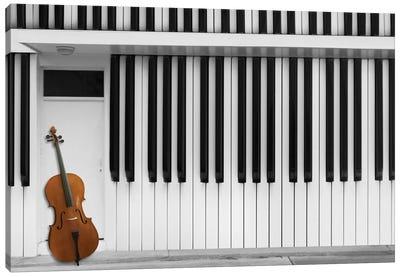 Cello At The Door Canvas Print #OXM2291