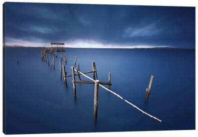 Carrasqueira Azul Canvas Art Print