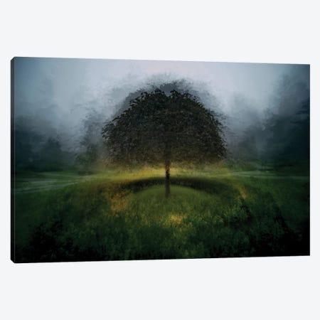 Eden Place Canvas Print #OXM2335} by Milan Malovrh Canvas Art Print