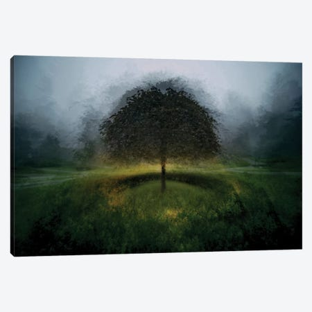Eden Place Canvas Print #OXM2335} by Milan Malovrh Canvas Art Print