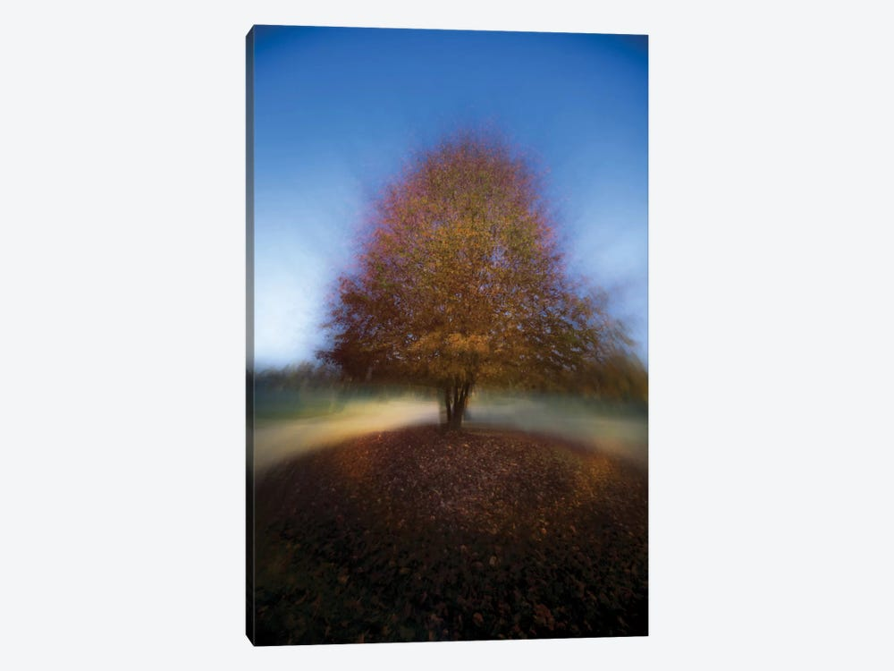 Mystical Tree by Milan Malovrh 1-piece Canvas Art Print