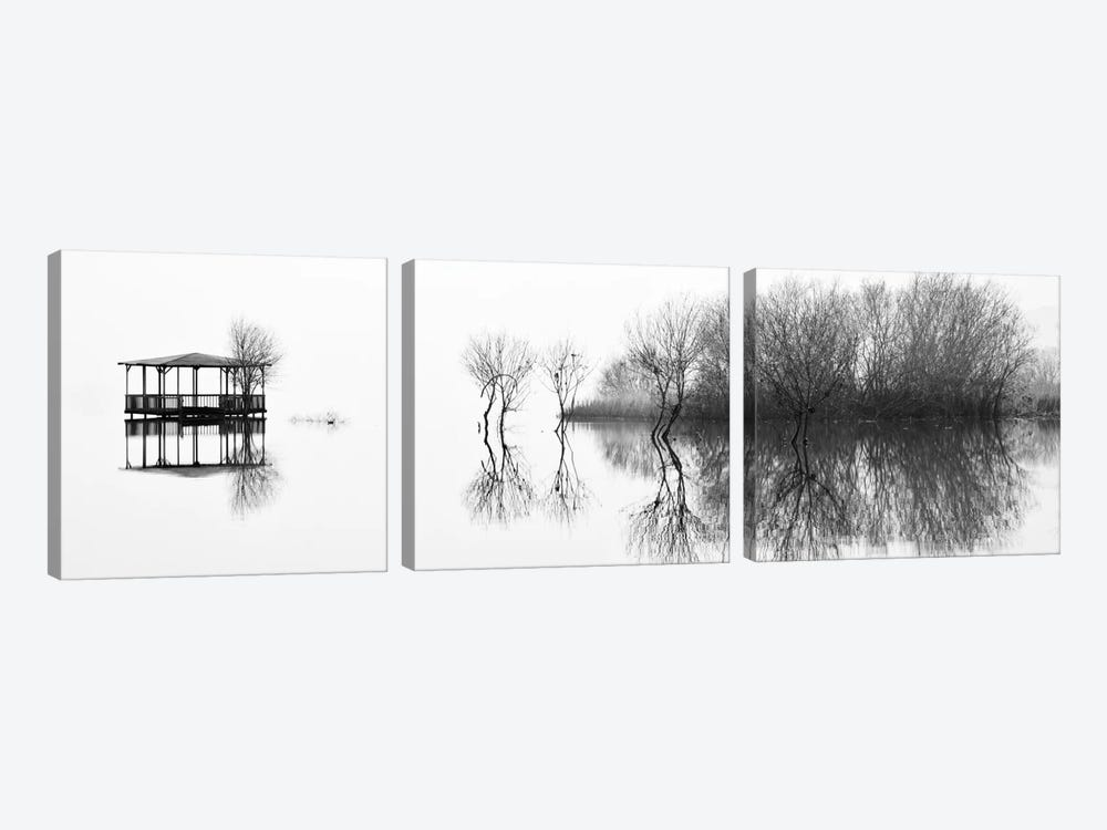 Changes by Paulo Abrantes 3-piece Art Print