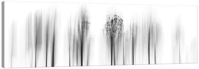 Leave Winter Behind Canvas Art Print