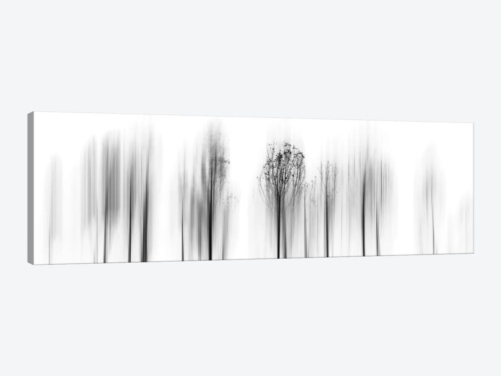 Leave Winter Behind by Paulo Abrantes 1-piece Canvas Print