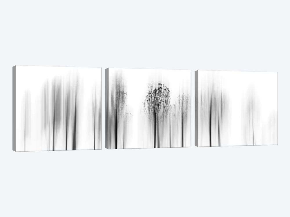 Leave Winter Behind by Paulo Abrantes 3-piece Canvas Art Print