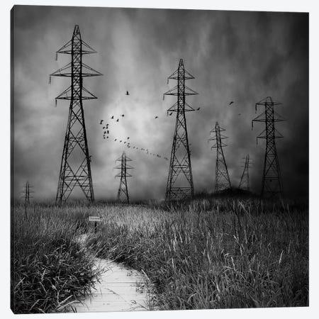 Industrial Culture Canvas Print #OXM2360} by David Senechal Photographie Canvas Art Print