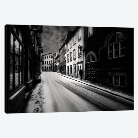 Leave Canvas Print #OXM2361} by David Senechal Photographie Canvas Print